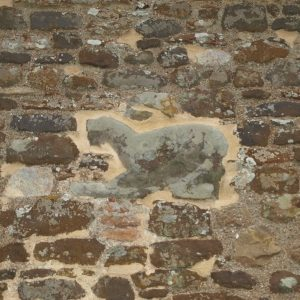 South wall animal carving
