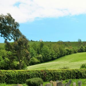 The view from Clayton churchyard