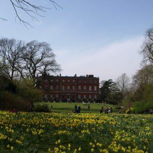 Clandon Park mansion