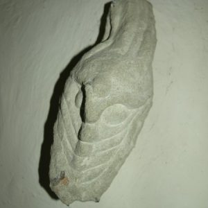 Carved head of serpent/dragon